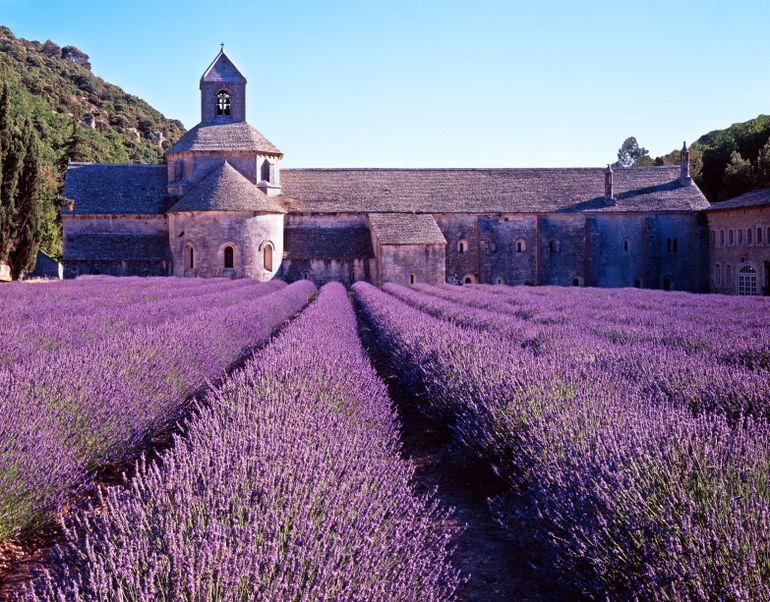 Sénanque Abbey, a Cistercian abbey near the village of Gordes, Vaucluse in Provence, France. lavender fields - as seen on linenlavenderlife.com